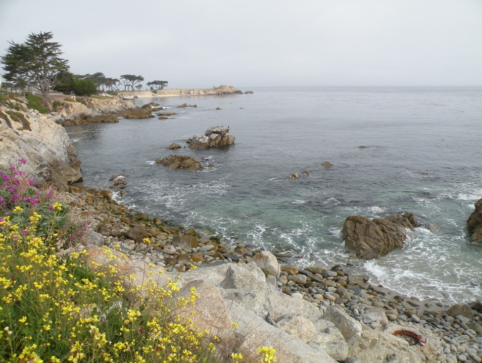 Take a leisurely stroll along the beautiful coastline of Monterey, CA