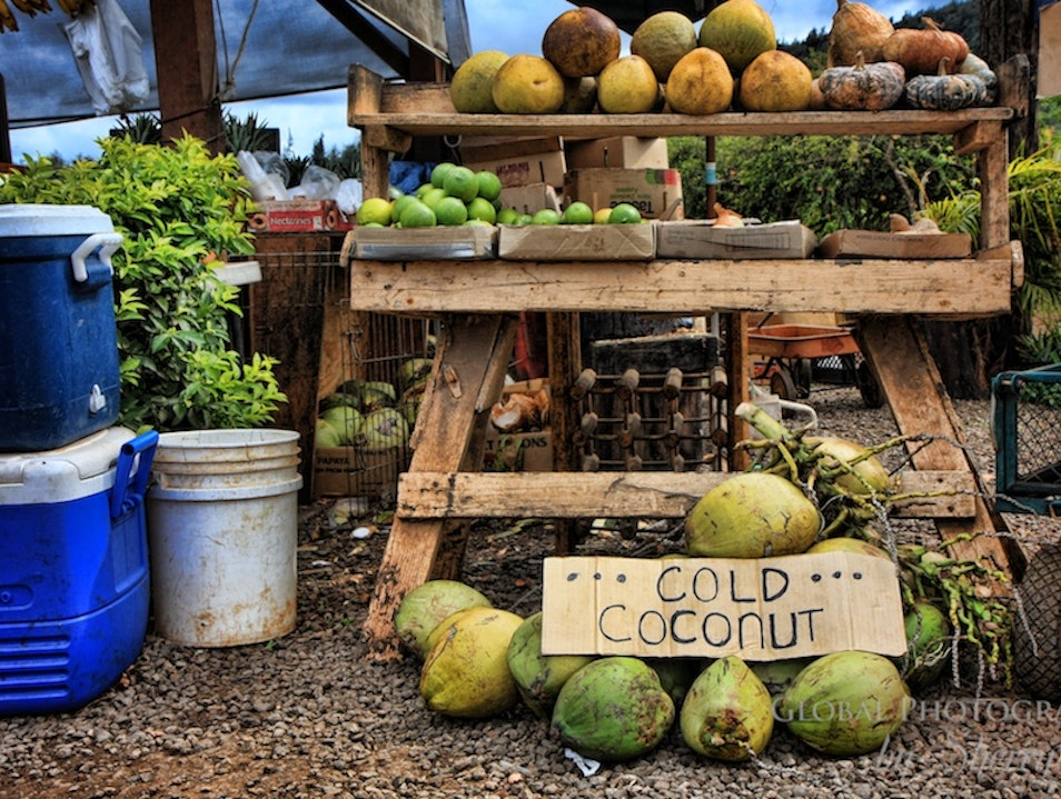 I Brake for Coconuts Waialua Hawaii United States