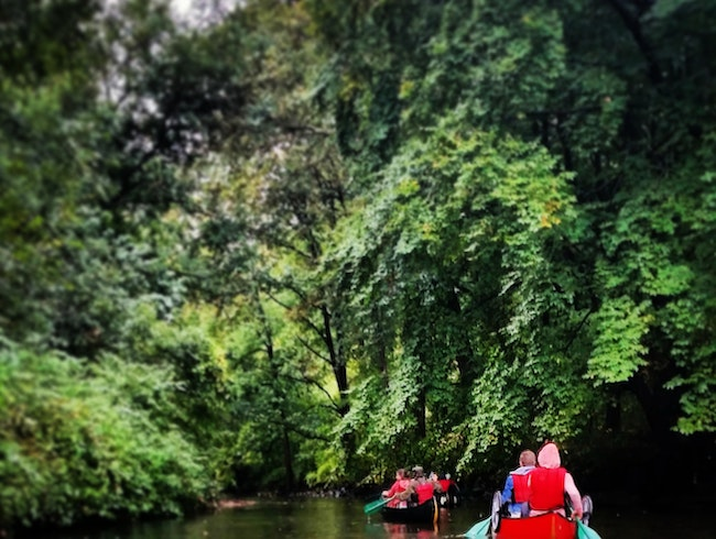 Canoeing the Bronx River