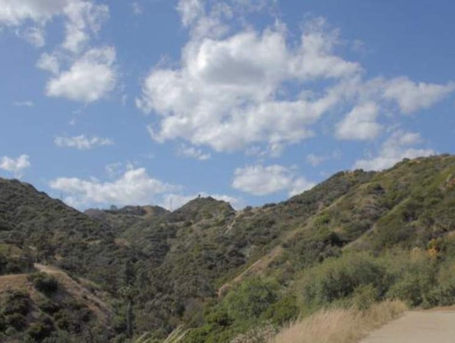 Hike Runyon Canyon in Los Angeles