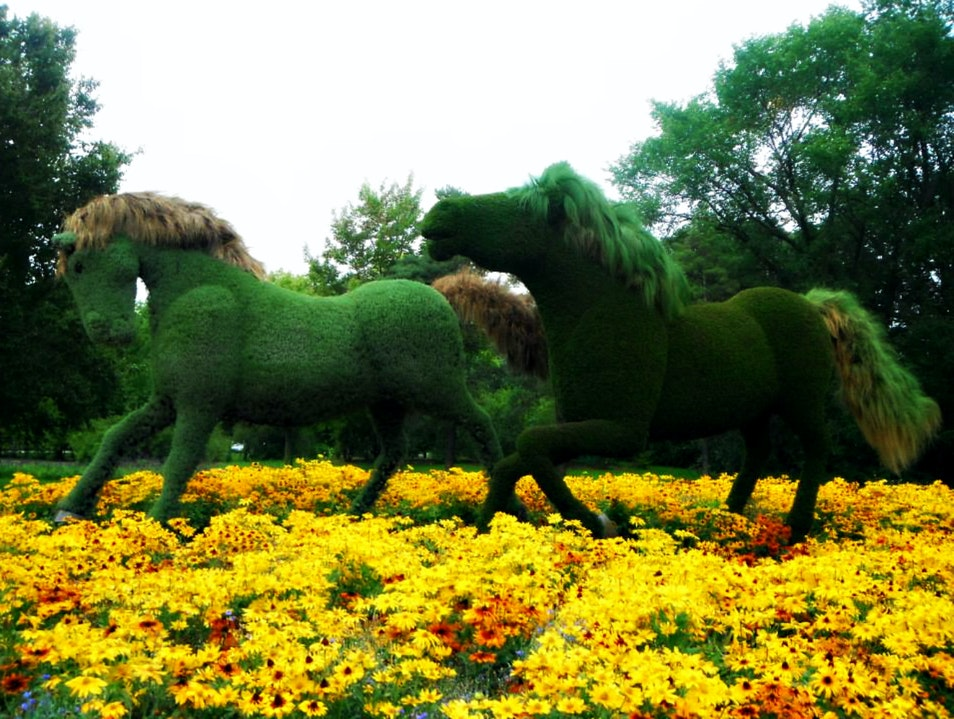THE #1 GARDEN TO VISIT IN CANADA Montreal  Canada
