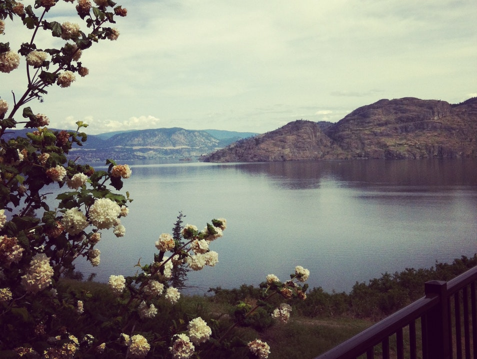Canadian Wine Tasting with a View Peachland  Canada