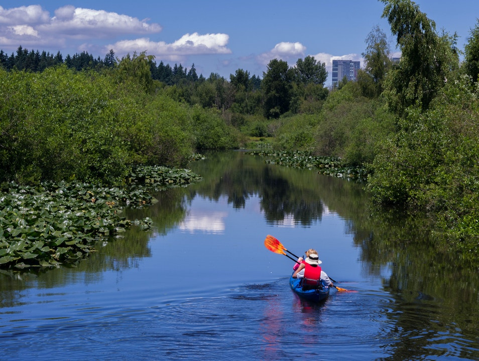 Paddling down the Slough Bellevue Washington United States