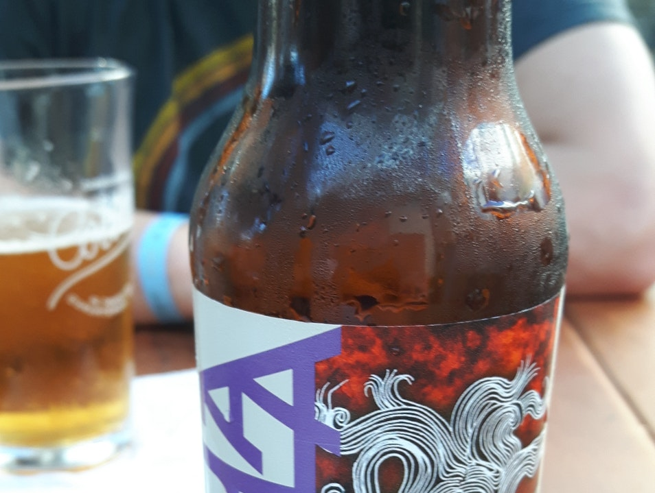 Finding a Tourist-Free Respite (and Mexican Microbrews) in Playa Del Carmen