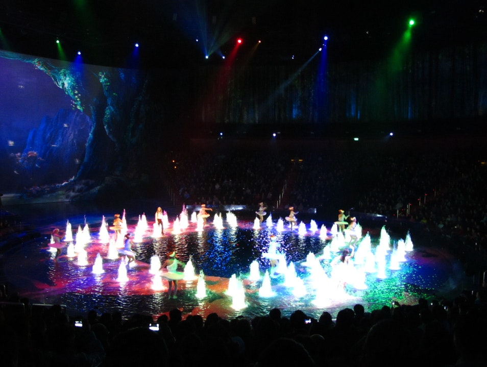 Spectacular sets with diving acrobats and motorcycle stunts