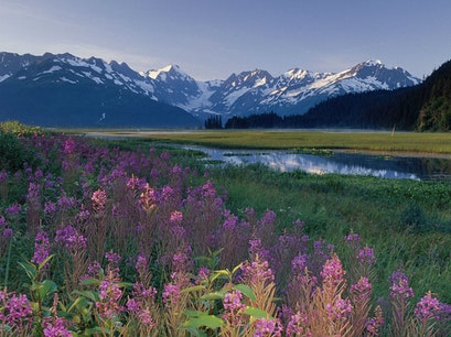 Chugach National Forest Moose Pass Alaska United States