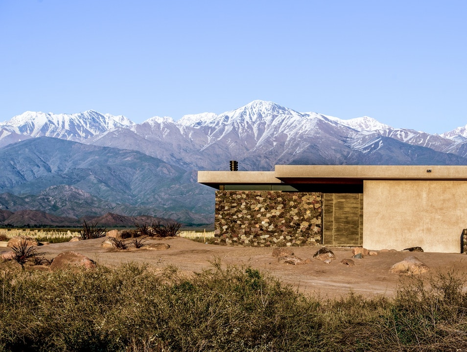 Own Part of a Mendoza Vineyard, or Just Stay at One