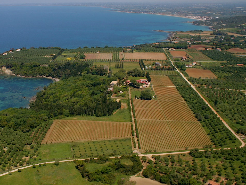 Mercouri Winery Ilia  Greece