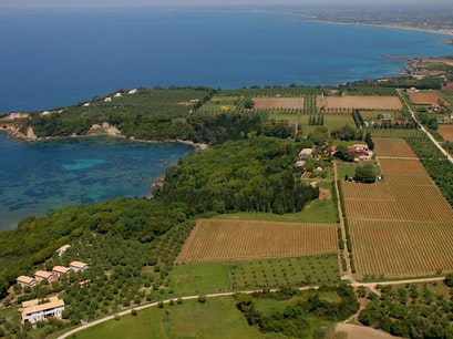 Mercouri Winery Pyrgos Ilias  Greece