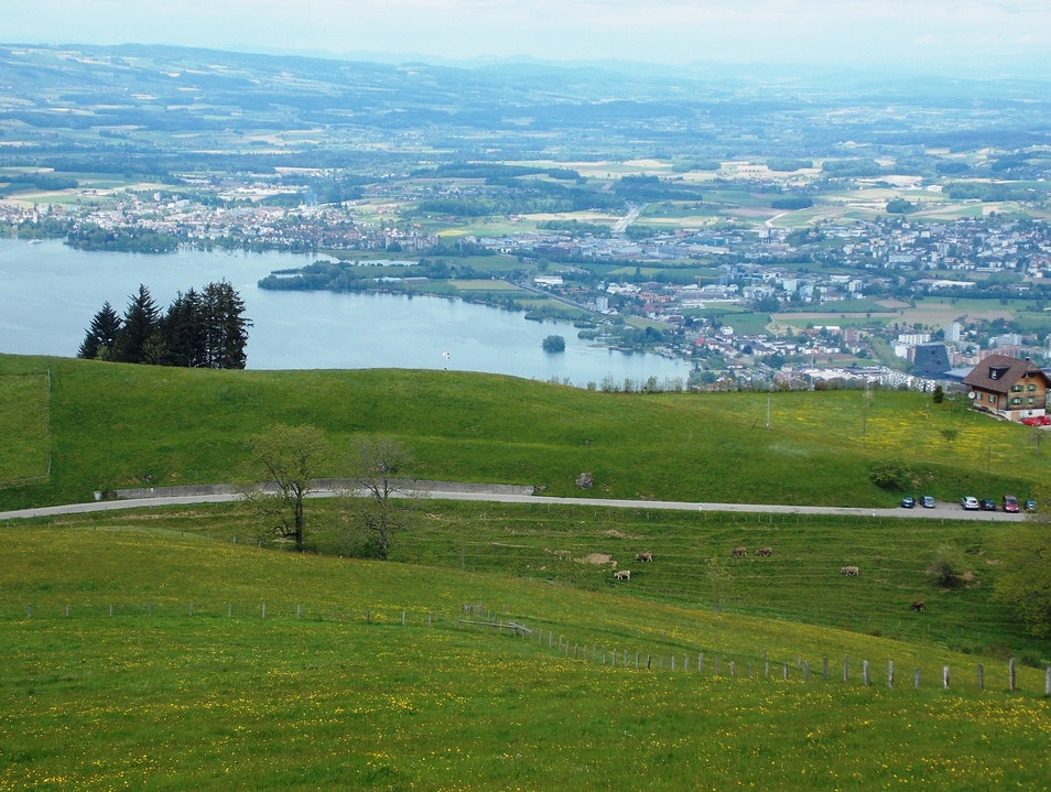 Lake Zug from above Zug  Switzerland