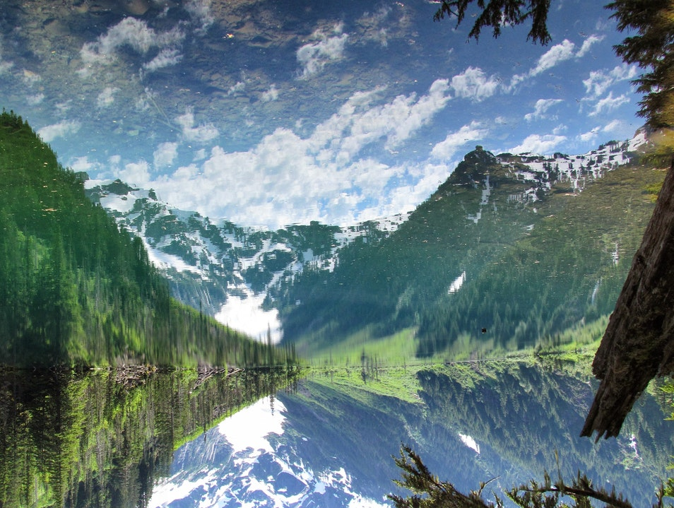 Turning things around: finally, summer in the Cascades Mt. Baker National Forest Washington United States