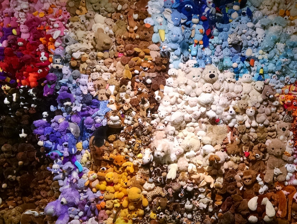 Stuffed Animal Wall Montreal  Canada
