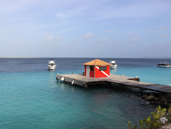 Dive, Stay, Eat & Relax at Captain Don's Habitat in Bonaire