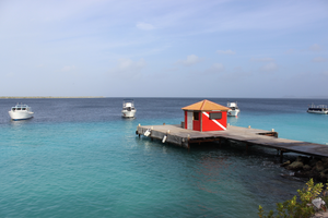 The Beauty of Bonaire