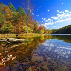 Best Places To Camp In Indiana