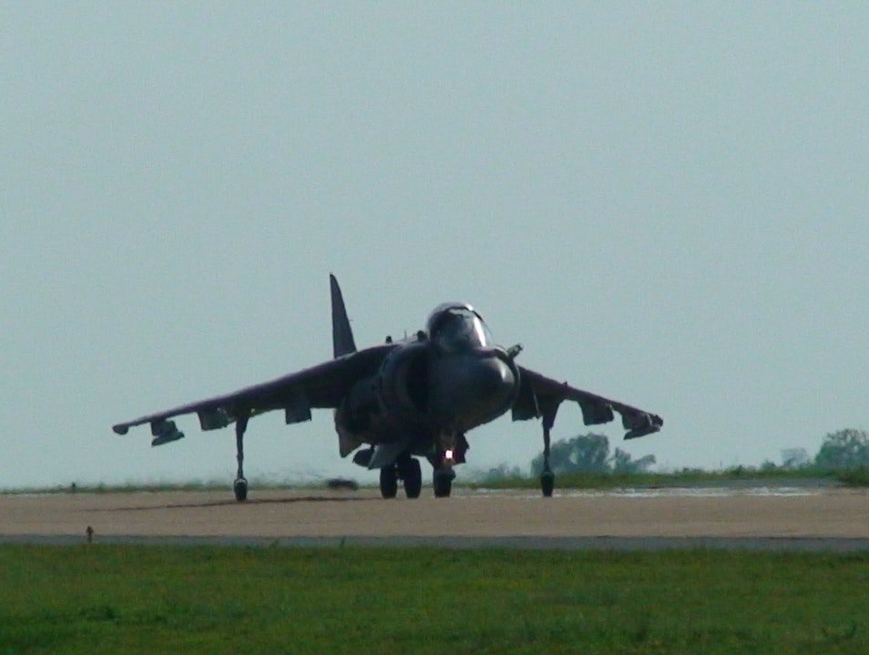 Harrier in Thailand Phra Phut  Thailand