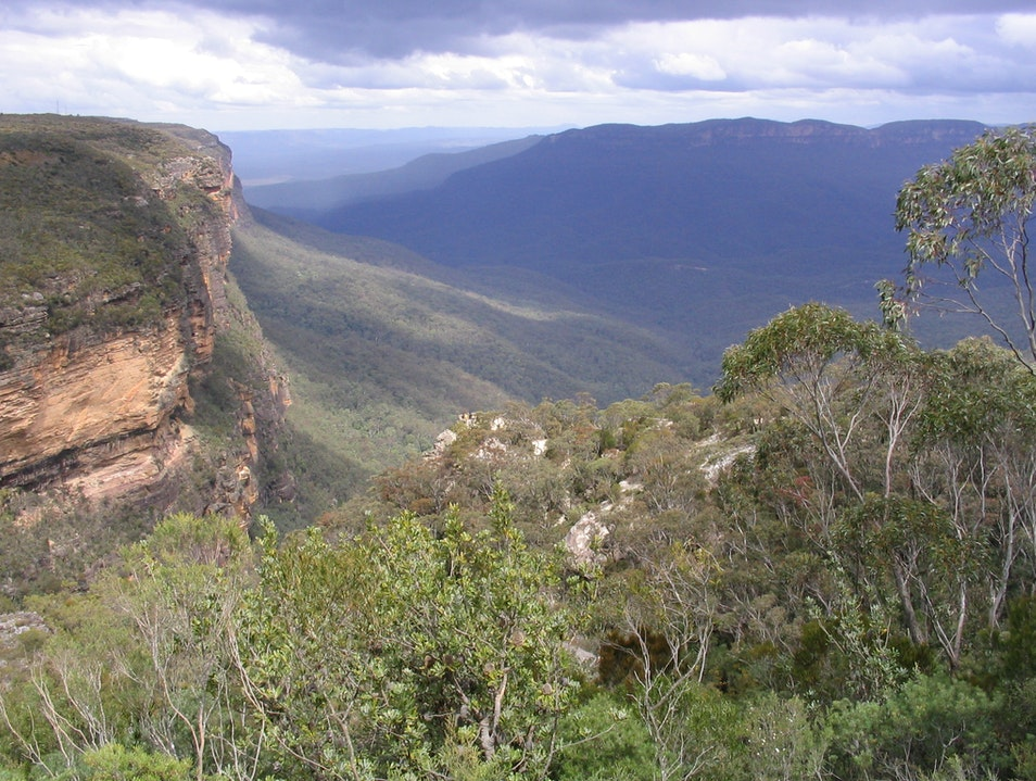 Mesmerizing View of the Blue Mountains in Australia Sydney  Australia
