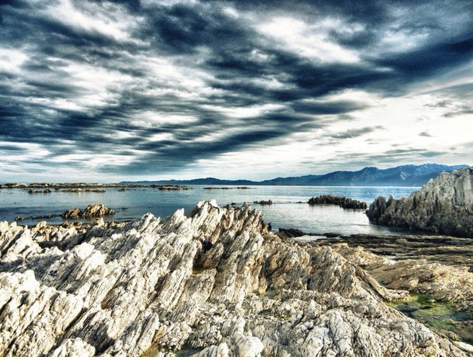 Jagged Edges Of South Bay  Kaikoura  New Zealand