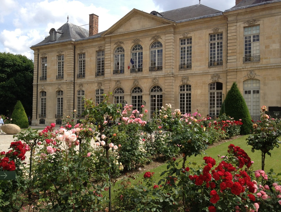 A rose gardeners dream Paris  France