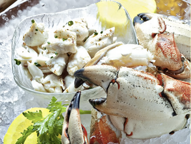 Feeling the Passion for Seafood