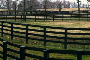 Horse Farms outside Lexington