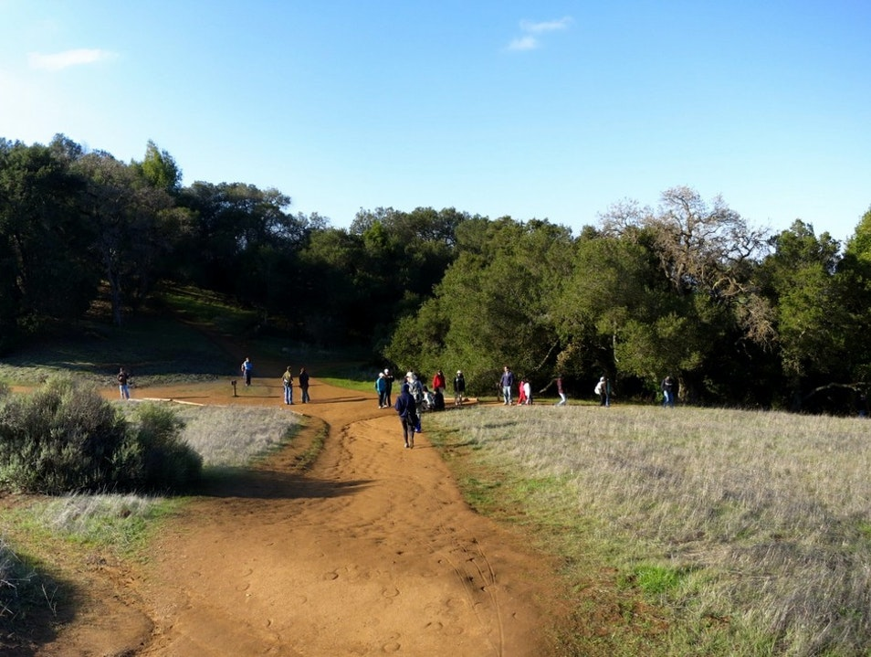 Beautiful Hiking Trails in the South Bay Los Altos California United States