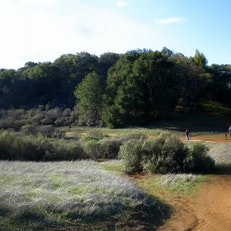 Rancho San Antonio Trail