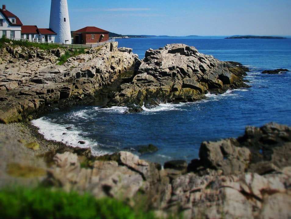 Pines, roses, salt; the scent of summer along the Maine coast