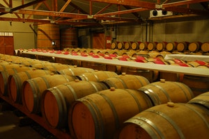 Cloudy Bay Vineyards Limited