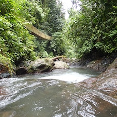 Rainmaker Rainforest Reserve