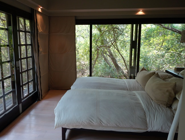 Luxury lodging in an African forest