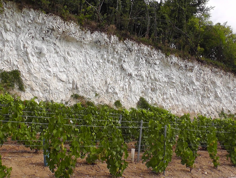 The White Chalk Soil of Champagne Hautvillers  France
