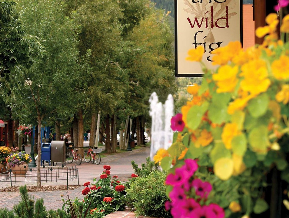 Wild Fig - The Hidden Gem of Aspen Aspen Colorado United States