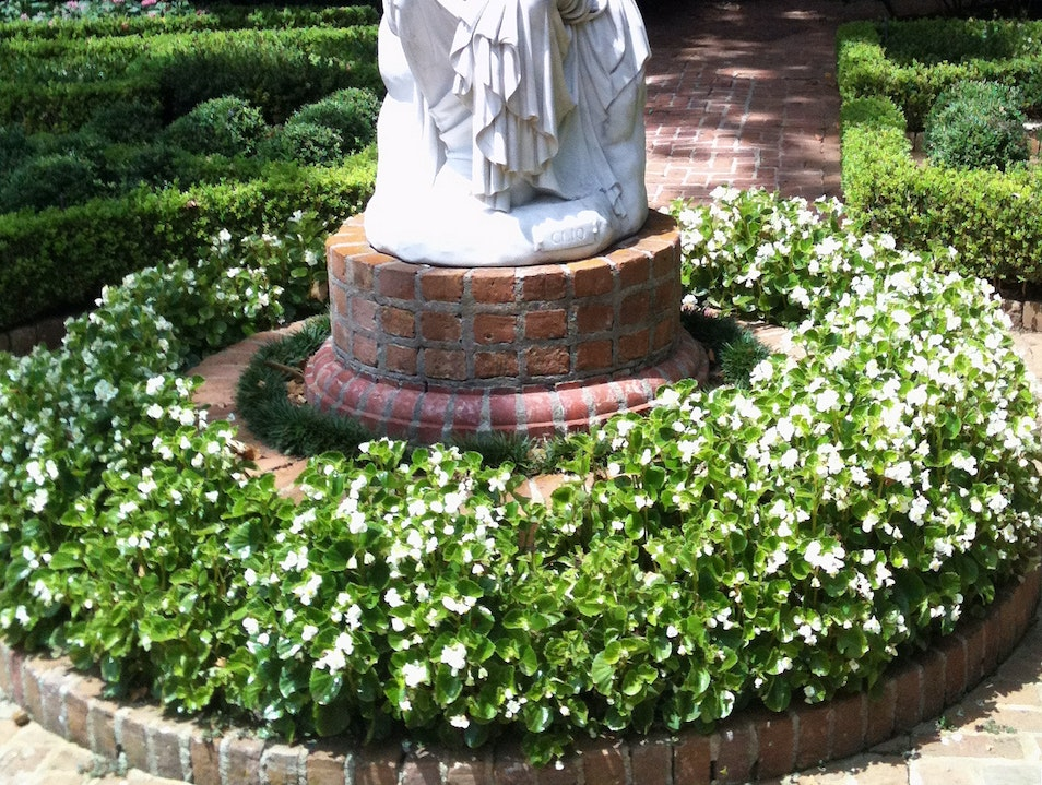 Stroll Majestic Gardens at Bayou Bend Houston Texas United States
