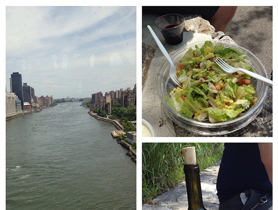 Picnic on Roosevelt Island New York New York United States