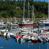 Winter Harbor Marina