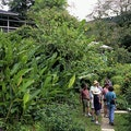 Asa Wright Nature Centre Tunapuna Piarco  Trinidad and Tobago