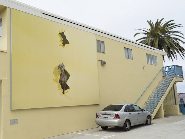 Track down the Murals of La Jolla