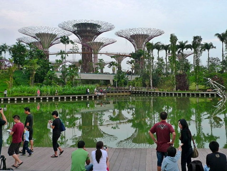 The Coolest Garden on the Planet  Singapore  Singapore