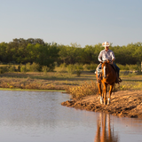 Wildcatter Ranch Resort and Spa