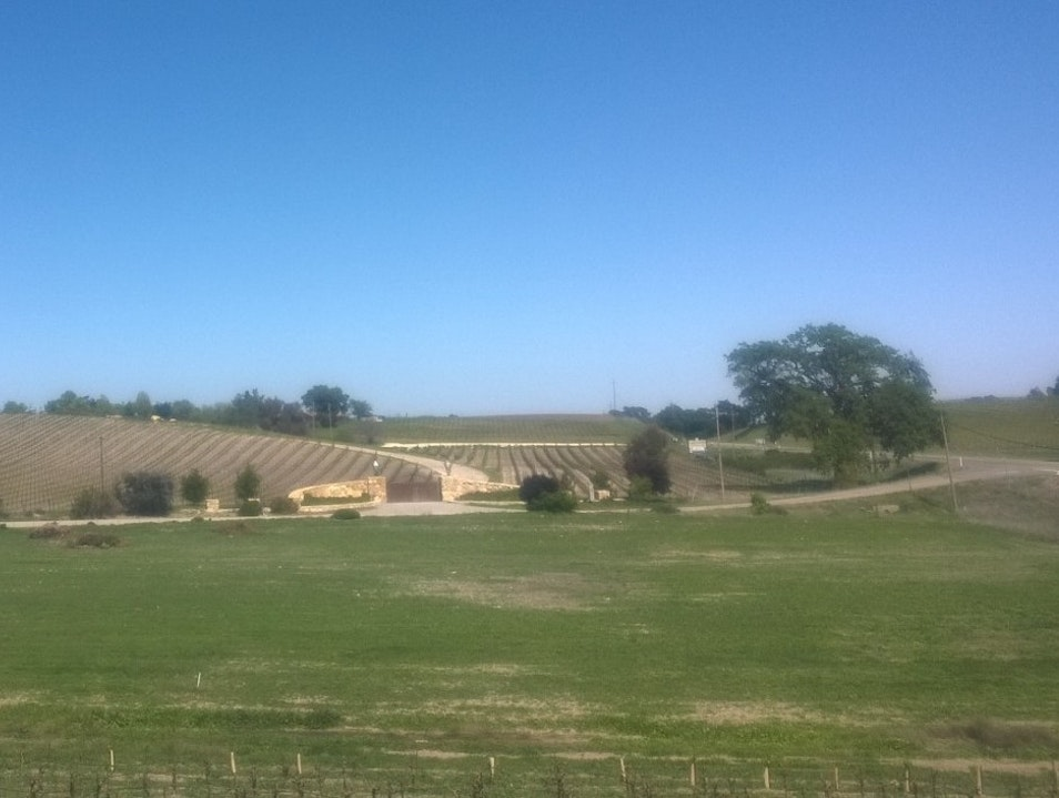 Grey Wolf Cellars, Vino and a Rest Stop