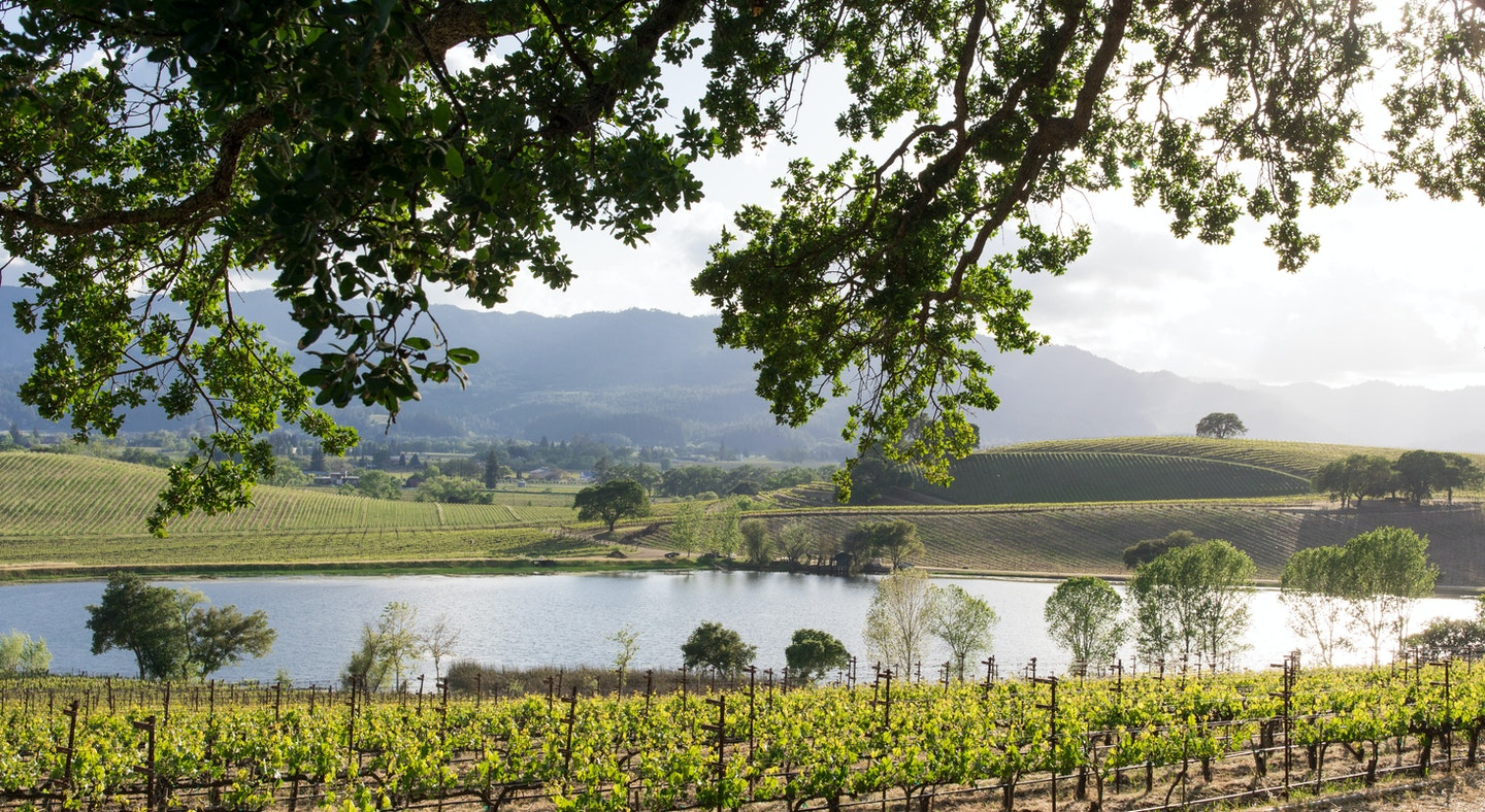 Exceptional Northern California Wine Country | AFAR