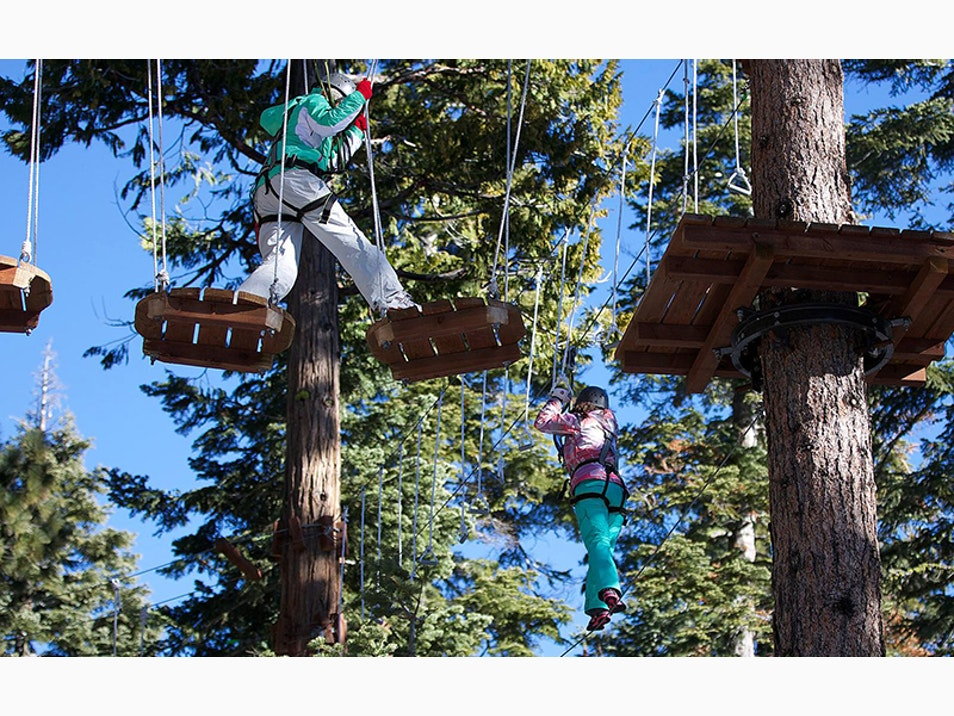 Zip Lines and Ropes Courses