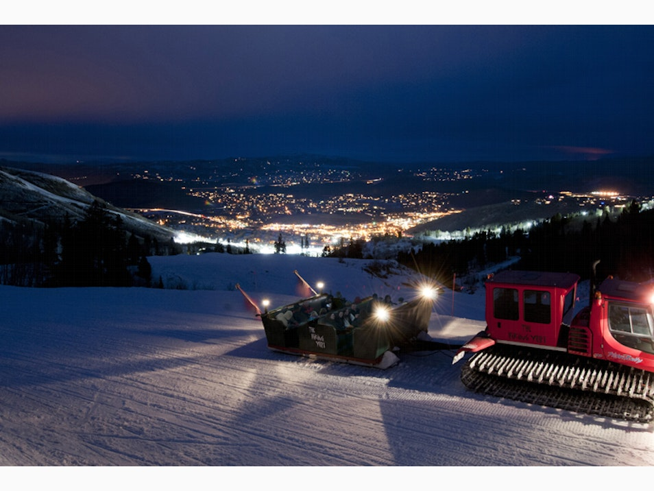 Spectacular Sleigh-and-Dine Experiences