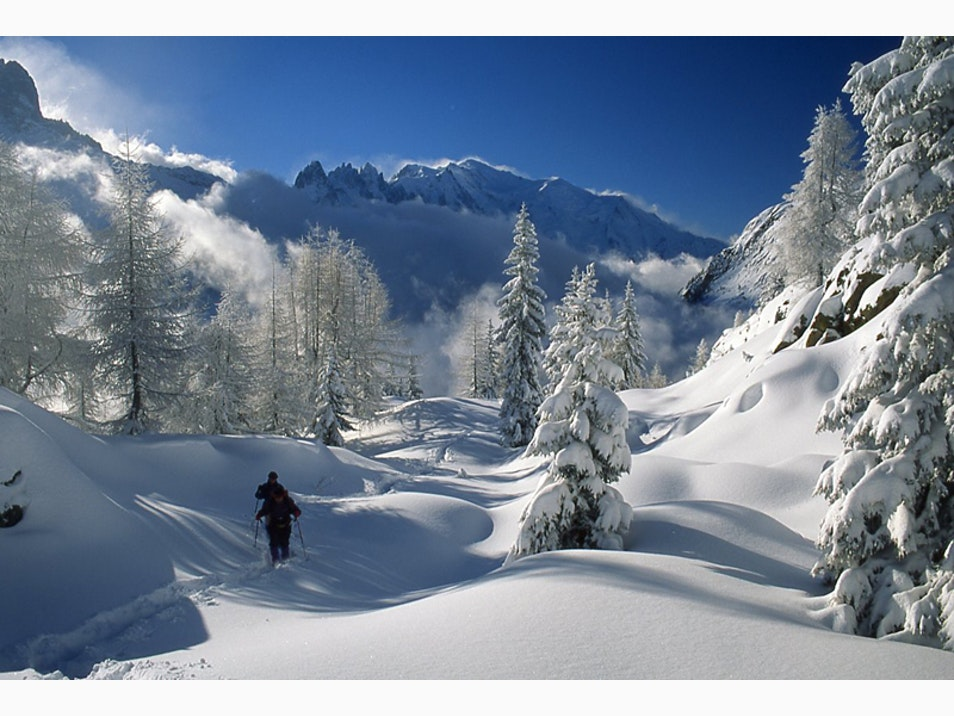 The Alpine Calm of Snowshoeing