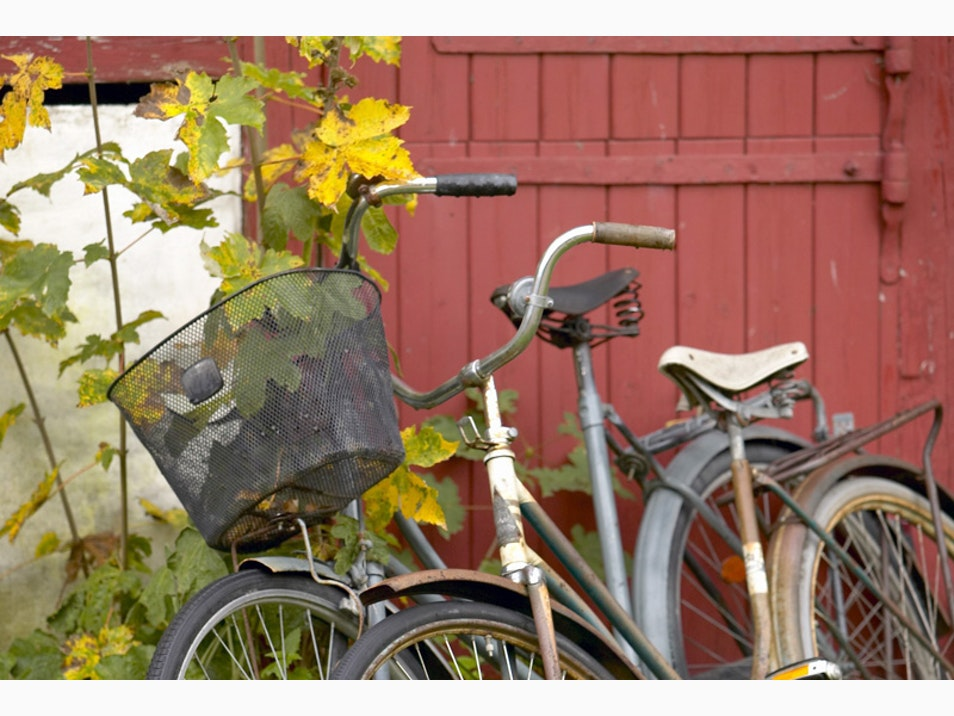 Napa Valley Bicycle Tours