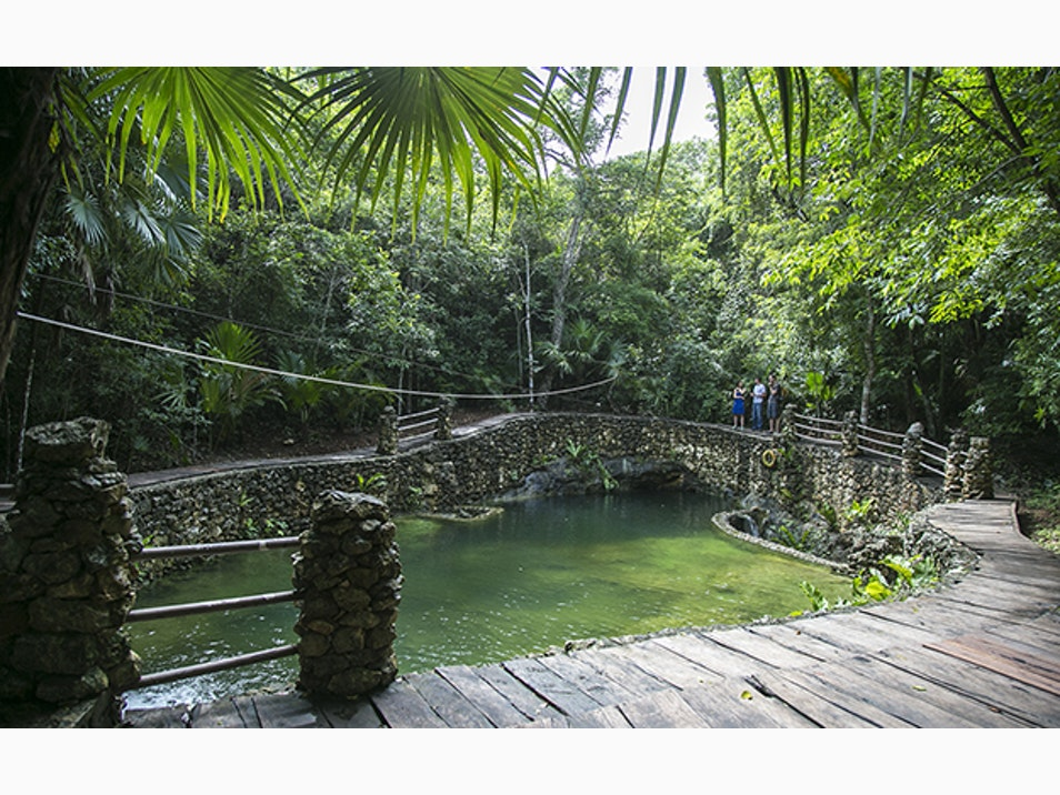 Beyond the Beach: Swimming in Cenotes