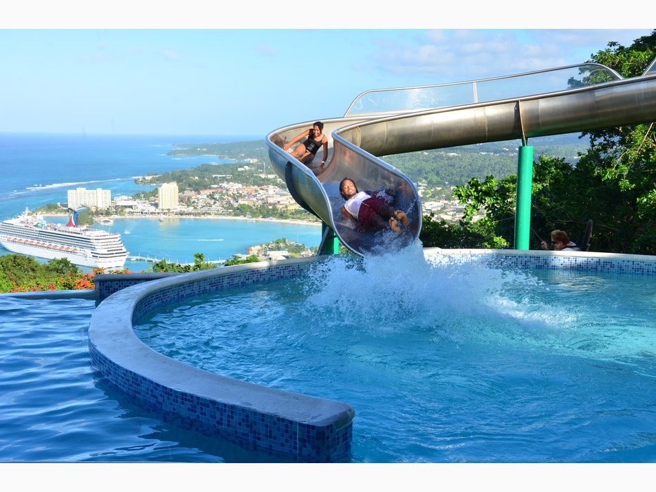 Waterslides and Marine Encounters