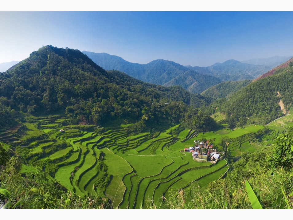 Spectacular Rice Terraces