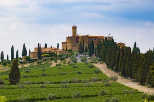 The Best Vineyards to Visit in Tuscany